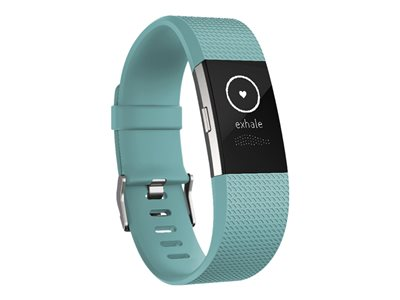 Fitbit Charge 2  Taille L