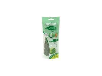 Calor XD7400C0 thé vert