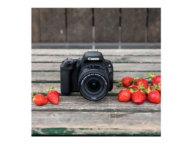 Canon EOS 200D<br>objectif EF-S 18-55 mm IS STM
